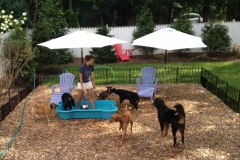 wholistic-pet-service-dog-boarding-3-pool-time-with-natalya