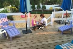 wholistic-pet-service-dog-boarding-5-niki-erica-jezebel-on-the-deck