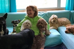 wholistic-pet-service-dog-boarding-boarding-photo-1