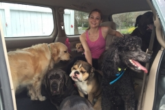 wholistic-pet-service-dog-hikes-10-erica-in-the-car