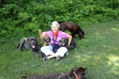 wholistic-pet-service-dog-hikes-img_3102