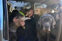 wholistic-pet-service-dog-hikes-puppy-loooove