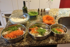 wholistic-pet-service-homemade-dog-meals-foodwithbroccoli-carrot