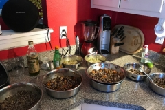 wholistic-pet-service-homemade-dog-meals-readymadefood