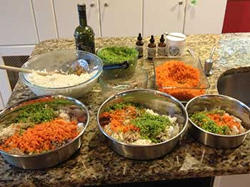 Wholistic Pet Services serving home cooked meals to our canine clients.